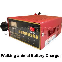 12V/24V Battery Charger for Walking Animal Rider
