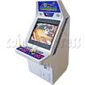 Classic Street Fighter 25 inch CRT Arcade Cabinet