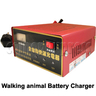 12V/24V Battery Charger for Walking Animal Rider