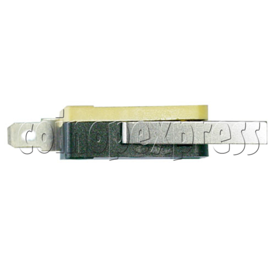 Precision Switch with Auxiliary Actuator 14321