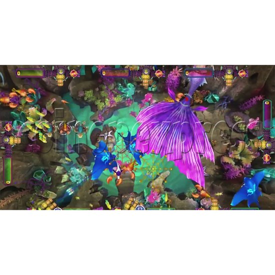 The Lost Dragon Fish Game Full Game board kit - game play-7