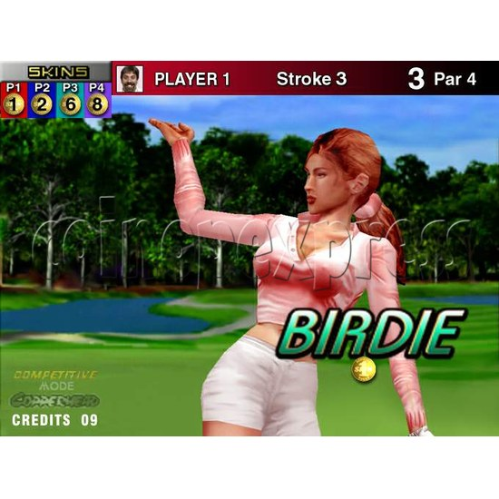 Skin Games (Midway Skins Golf Kit) - stop production 4189